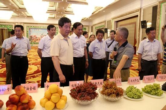 河南省省长陈润儿出席郑果所百项瓜果新成果推介观摩会