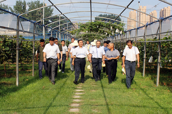 武国定在郑果所调研:发挥优势加强创新,为河南现代果业发展做出更大贡献