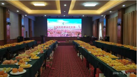 全国桃产业绿色技术交流现场会在山东省蒙阴县成功举办