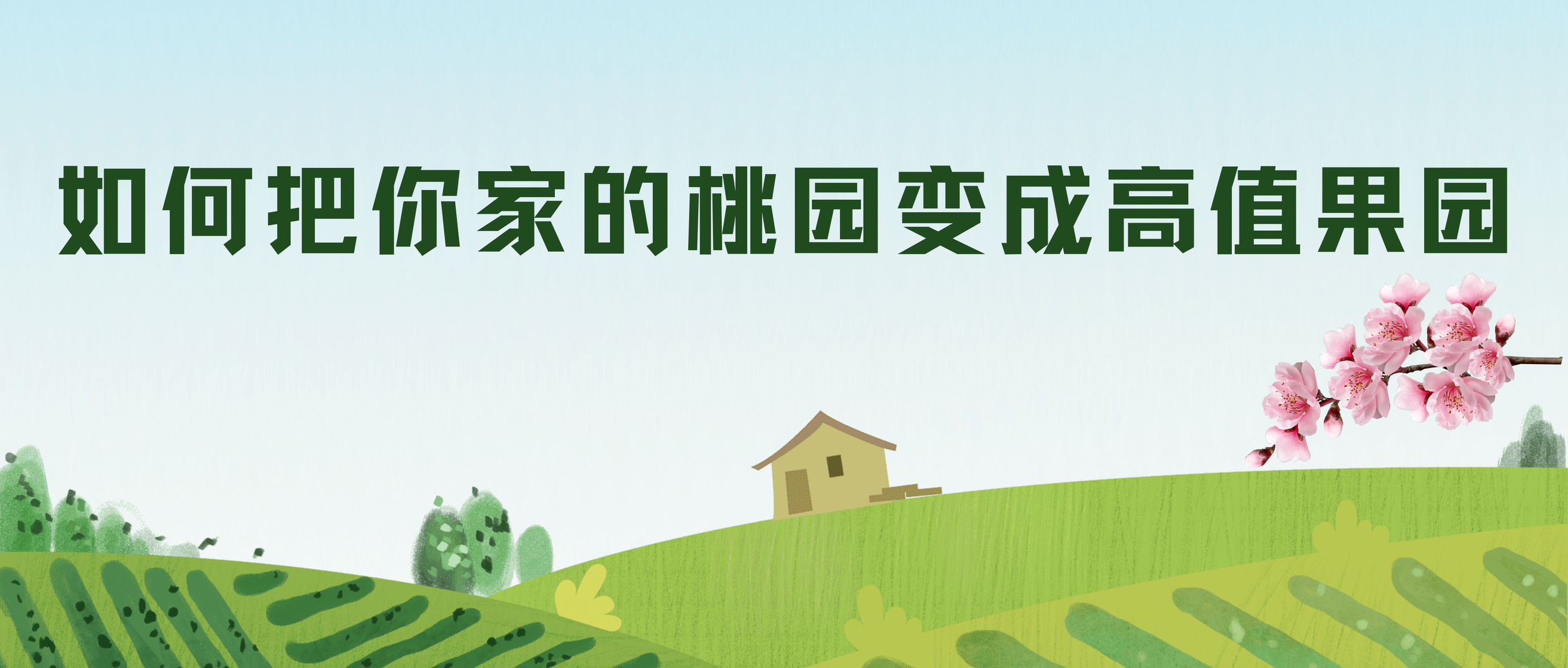 如何把你家的桃园变成高值果园 ——2021年种什么?怎么种?怎么卖?