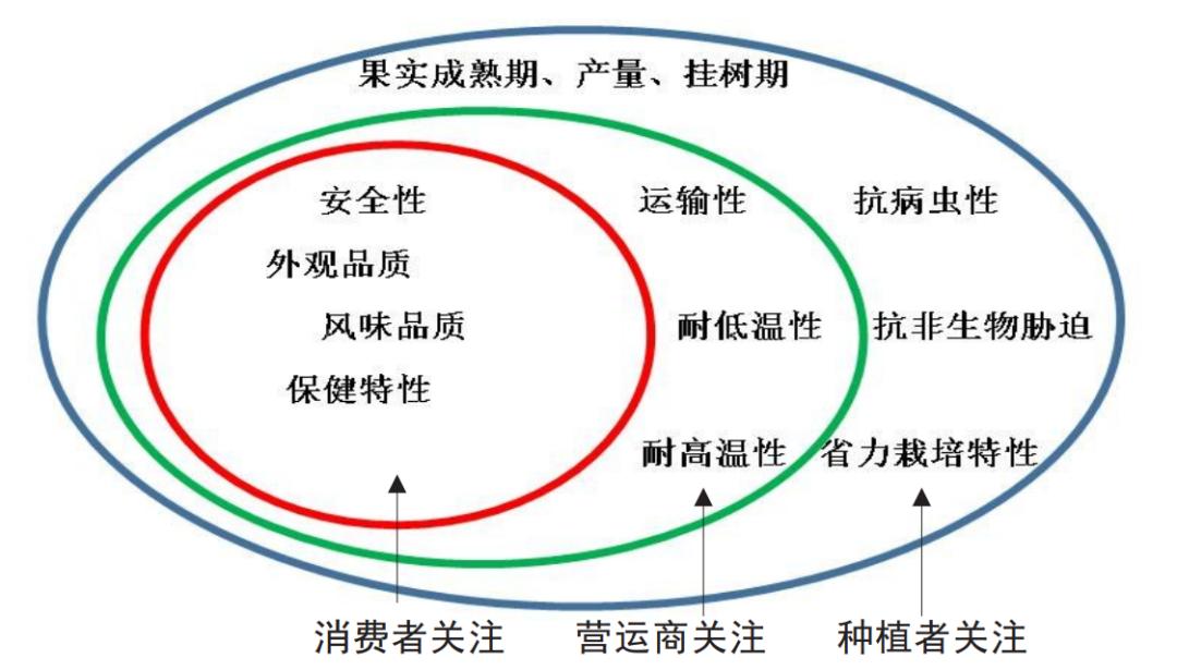 """王力荣   """"1+3""""参与式果树新品种选育模式探讨"""